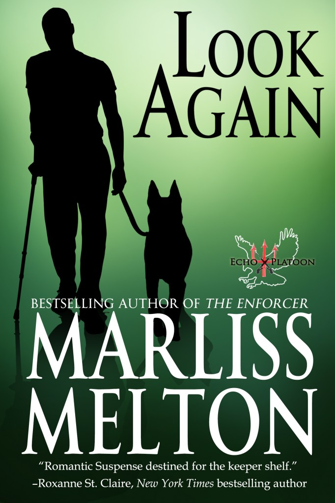 Prequel to the Echo Platoon Series by Marliss Melton